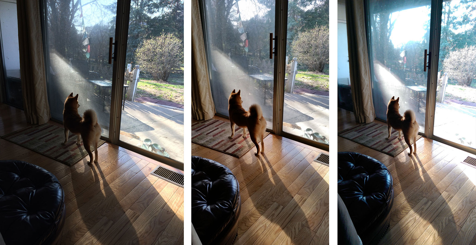 5s_m8_gs5_photo_comparison_10