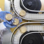 Overhead view of worker inspecting biscuits on production line in food factory